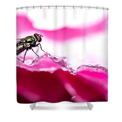 Shower Curtain featuring the photograph Fly Man's Floral Fantasy by T Brian Jones