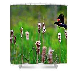 Flying Amongst Cattails Shower Curtain by James F Towne
