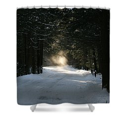 Flying Angel No.2 Shower Curtain