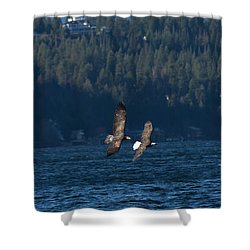 Flying Bald Eagles Shower Curtain