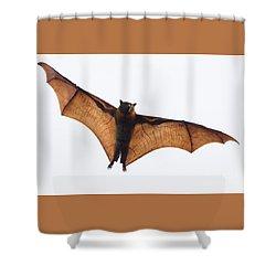 Flying Bat Shower Curtain
