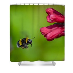 Flying Bumblebee Shower Curtain