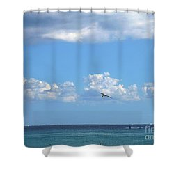 Shower Curtain featuring the photograph Flying By The Sea by Francesca Mackenney
