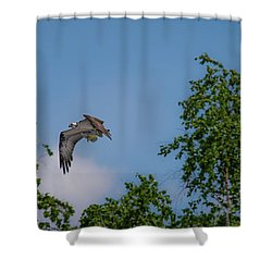 Shower Curtain featuring the photograph Flying Crappie by Onyonet  Photo Studios
