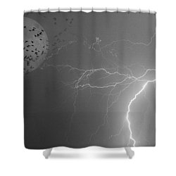 Flying From The Storm Bw Shower Curtain by James BO  Insogna
