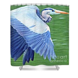Flying Great Blue Heron Shower Curtain