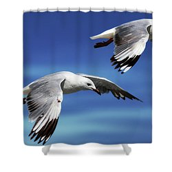 Flying High 0064 Shower Curtain