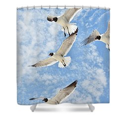 Shower Curtain featuring the photograph Flying High by Jan Amiss Photography
