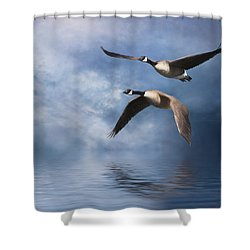 Shower Curtain featuring the digital art Flying Home by Nicole Wilde