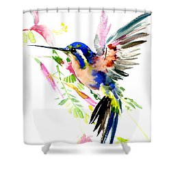 Flying Hummingbird Ltramarine Blue Peach Colors Shower Curtain