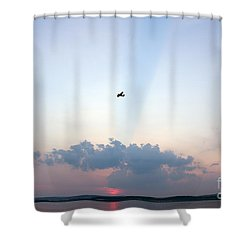 Shower Curtain featuring the photograph Flying In Sunset by Odon Czintos