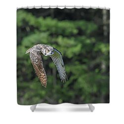 Flying Low... Shower Curtain