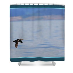 Flying Rhino Shower Curtain by BYETPhotography