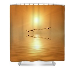 Flying South Shower Curtain by Wim Lanclus