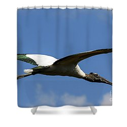 Flying Stork-no Baby Shower Curtain