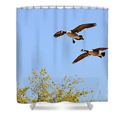 Flying Twins Shower Curtain