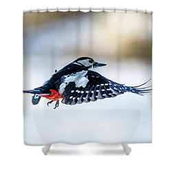 Shower Curtain featuring the photograph Flying Woodpecker by Torbjorn Swenelius