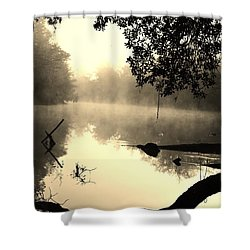 Fog And Light In Sepia Shower Curtain by Warren Thompson