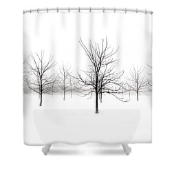 Fog And Winter Black Walnut Trees  Shower Curtain