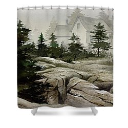 Shower Curtain featuring the painting Fog At The Coast by James Williamson