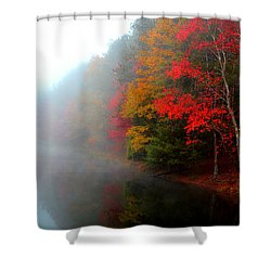Clearing Fog Shower Curtain