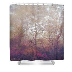 Fog In Autumn Mountain Woods Shower Curtain