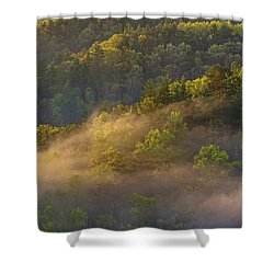 Fog Playing In The Forest Shower Curtain