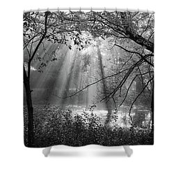 Fog Rays Shower Curtain by Betsy Zimmerli