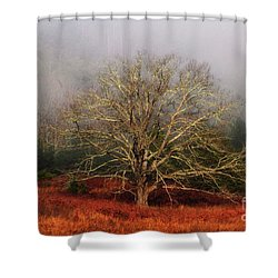Fog Tree Shower Curtain