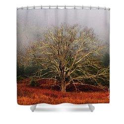 Fog Tree Shower Curtain