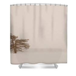 Fogged In Shower Curtain by Jill Laudenslager