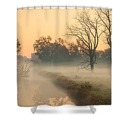 Foggy Fall Morning On Gary Avenue Shower Curtain