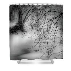 Shower Curtain featuring the photograph Foggy Feeder by Kendall McKernon