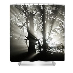 Foggy Flares Shower Curtain