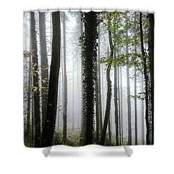 Shower Curtain featuring the photograph Foggy Forest by Chevy Fleet