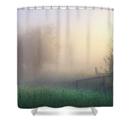 Foggy Morning Shower Curtain by Dan Jurak