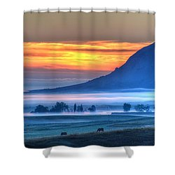 Foggy Morning Shower Curtain by Fiskr Larsen