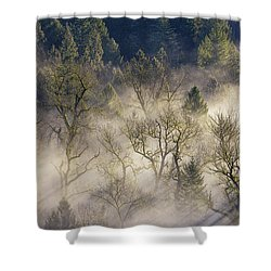Foggy Morning In Sandy River Valley Shower Curtain by David Gn