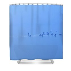 Shower Curtain featuring the photograph Foggy Morning Lake Geese by Randy Steele