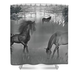 Foggy Morning Pasture Shower Curtain