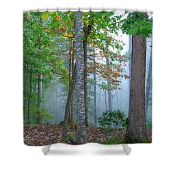 Foggy Morning Shower Curtain by Rosie Brown