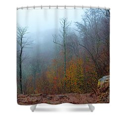 Foggy Nature Shower Curtain