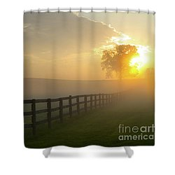 Foggy Pasture Sunrise Shower Curtain