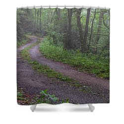 Foggy Road Shower Curtain by David Cote