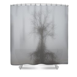 Foggy Walnut Shower Curtain