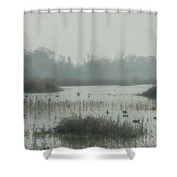 Foggy Wetlands Shower Curtain