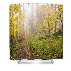 Foggy Winsor Trail Aspens In Autumn 2 - Santa Fe National Forest New Mexico Shower Curtain