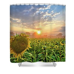 Foggy Yellow Fields Shower Curtain