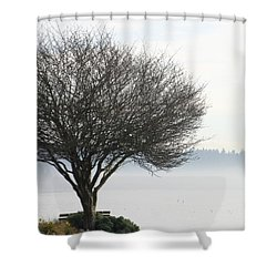 Fogscape Shower Curtain by Trudy Parman