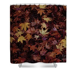 Foil Leaves Shower Curtain by Robert Ball